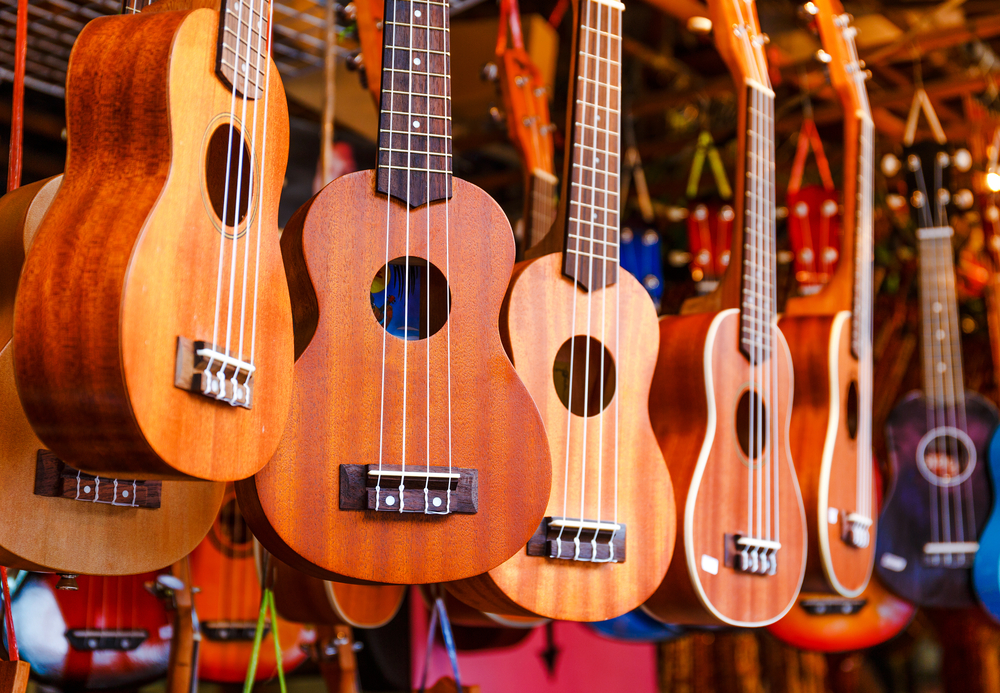 Which Ukulele is BEST for a Beginner: Soprano, Concert, Tenor or Britone? Why?